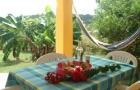 hébergement kitesurf guadeloupe cocodile terrasse