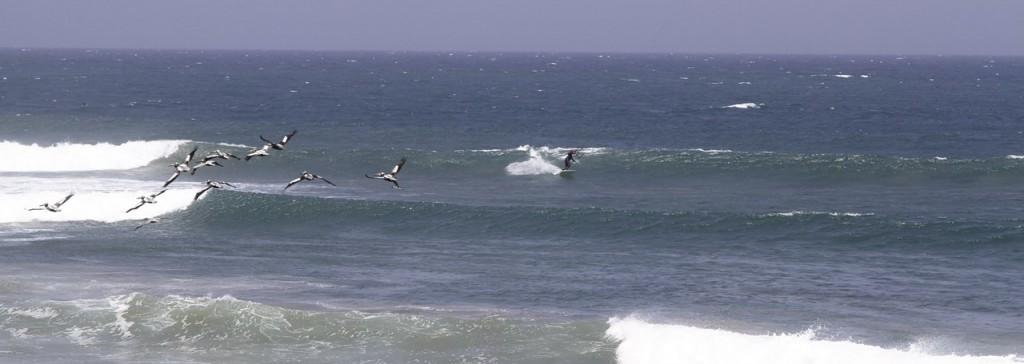 Wave riding kite Cabo Blanco